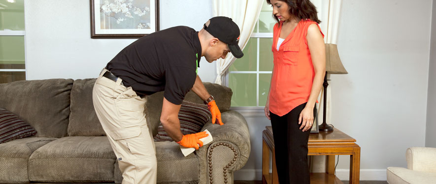 Natchitoches, LA carpet upholstery cleaning
