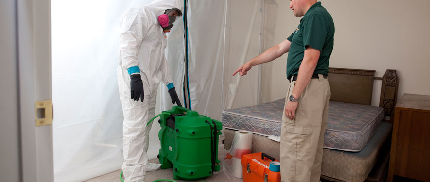 Deridder, LA mold removal process